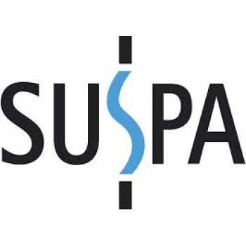 Газовые пружины, газлифты, амортизаторы SUSPA серия 16-6 Германия